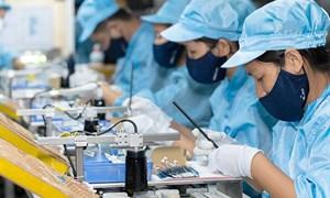 Khu vực tư nhân có vai trò trọng yếu thúc đẩy tăng trưởng kinh tế của Việt Nam
