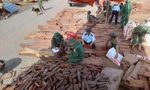 Cục Hải quan Quảng Trị phối hợp bắt giữ vụ buôn lậu gỗ và đá quý, trị giá khoảng 15 tỷ đồng