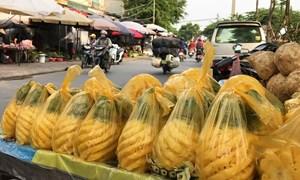 [Video] Hà Nội: Điều khủng khiếp đến từ