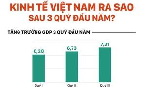 [Infographics] GDP Việt Nam tăng trưởng hơn 7% trong quý III, cao nhất 9 năm