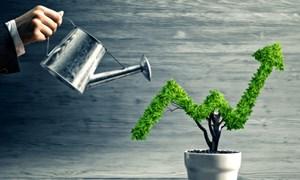 Trách nhiệm xã hội của doanh nghiệp trong bối cảnh hiện nay