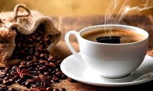 [Video] Cà phê Việt lọt top ngon nhất thế giới trên CNN