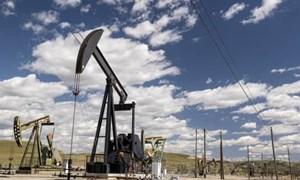 Giá xăng dầu bất ngờ giảm khi nhà đầu tư