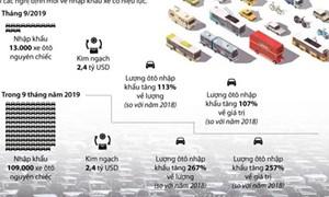 [Infographics] Việt Nam nhập khẩu ôtô tăng 113% so với năm 2018