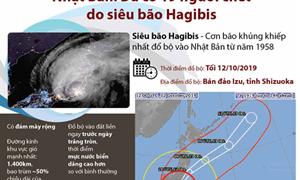[Infographics] Nhật Bản: Đã có 19 người chết do siêu bão Hagibis
