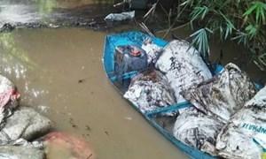[Video] Hiện trường nơi nhiễm dầu thải nghi ảnh hưởng nguồn nước sạch tại Hà Nội