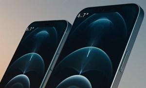 [Infographics] So sánh bộ đôi iPhone 12 Pro với 11 Pro