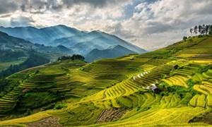 [Video] Việt Nam lọt vào tốp du lịch tuyệt vời nhất thế giới