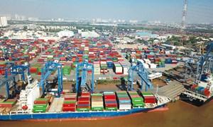 Rà soát điều kiện hoạt động các doanh nghiệp kinh doanh kho, bãi, cảng