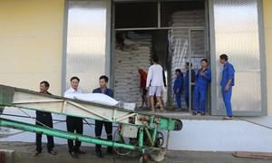 Cục Dự trữ Nhà nước khu vực Nghệ Tĩnh kịp thời xuất cấp hỗ trợ nhân dân bị thiên tai