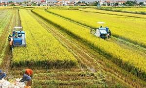 Máy móc, thiết bị chuyên dùng phục vụ cho sản xuất nông nghiệp có phải nộp thuế GTGT?