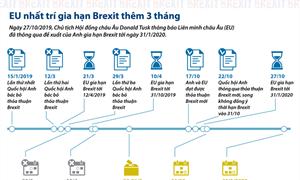 [Infographics] EU nhất trí gia hạn Brexit thêm 3 tháng