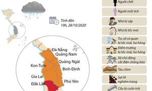 [Infographics] Thống kê những thiệt hại ban đầu do bão số 9