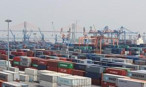 Số liệu nhập khẩu hàng hóa tháng 10 năm 2019