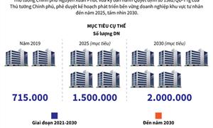 [Infographics] Phát triển bền vững doanh nghiệp tư nhân đến năm 2025 tầm nhìn 2030