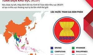 [Infographics] Đặc điểm Hiệp định đối tác kinh tế toàn diện khu vực