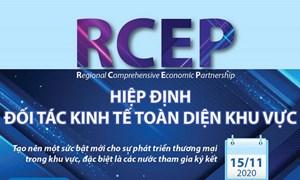 [Infographics] Tổng quan về Hiệp định Đối tác Kinh tế Toàn diện Khu vực RCEP