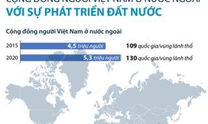 [Infographics] Cộng đồng người Việt Nam ở nước ngoài: Nguồn lực cho đất nước phát triển