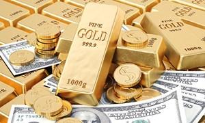 Số liệu chỉ số giá tiêu dùng, chỉ số giá vàng và chỉ số giá đô la Mỹ tháng 11 và 11 tháng đầu năm 2019
