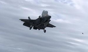 [Video] Chim sống trên tàu sân bay Anh, đe dọa tiêm kích F-35