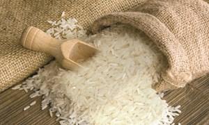 [Infographics] Nâng cao giá trị hạt gạo Việt Nam