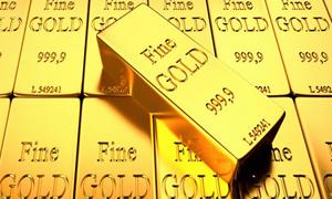 Giá vàng biến động nhẹ chờ đợt bứt phá mới
