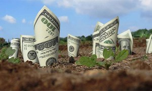[Video] Khám phá dây chuyền biến hàng triệu đô la tiền mặt thành phân bón
