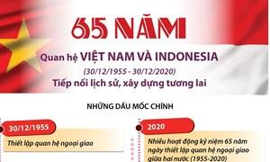 [Infographics] Quan hệ Việt Nam-Indonesia: Tiếp nối lịch sử, xây dựng tương lai