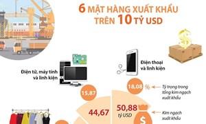 [Infographics] 6 mặt hàng xuất khẩu trên 10 tỷ USD trong 2020