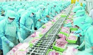  Cơ hội mới cho Việt Nam trên thị trường EU