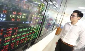 Cơ hội bắt đáy những cổ phiếu tốt?