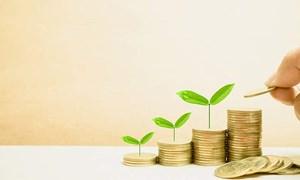 Phát triển bảo hiểm liên kết đầu tư và vấn đề đặt ra