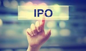 Phương thức và giá bán cổ phần lần đầu theo quy định mới