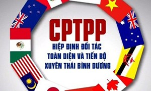 Hướng dẫn mới về chứng từ chứng nhận xuất xứ hàng hóa theo Hiệp định CPTPP