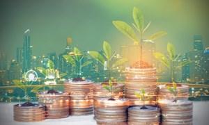 Việt Nam – Điểm trú ẩn hấp dẫn cho nhà đầu tư