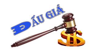 DATC tìm tổ chức bán đấu giá tài sản