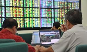 Thị trường chứng khoán: Tích lũy để kiểm định cung - cầu