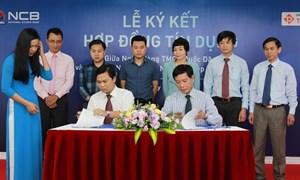 NCB cấp 450 tỷ đồng hạn mức cho Công ty Nông nghiệp Thuận Phát