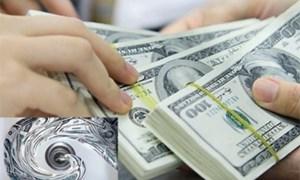 Ngành Hải quan đẩy mạnh thực hiện phòng chống rửa tiền