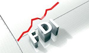 Đã có 2,948 tỷ USD vốn ngoại góp vào 3.141 doanh nghiệp Việt