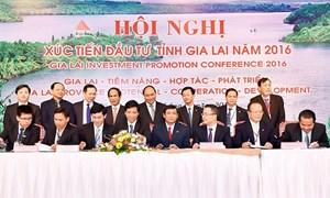 Vietcombank: Chung tay phát triển kinh tế - xã hội tỉnh Gia Lai