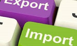 Cắt giảm thêm nhiều thủ tục hành chính trong hoạt động xuất nhập khẩu