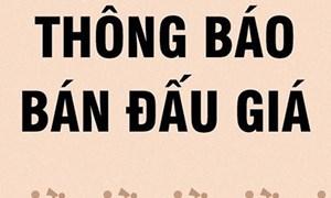DATC bán tài sản tại Công ty TNHH Đầu tư Minh Quang và các công ty liên quan