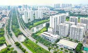 Chủ đầu tư bất động sản nào nằm trong danh mục thanh tra năm 2019?