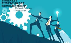 Tác động của năng lực tài chính tới tăng trưởng bền vững trong doanh nghiệp