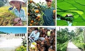 Đầu tư tín dụng phát triển nông nghiệp theo hướng hiện đại