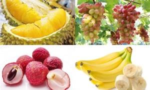 Thực phẩm nào có thể phát sinh nồng độ cồn trong hơi thở?