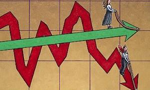 Top 5 công ty chứng khoán sụt giảm thị phần trong năm 2019