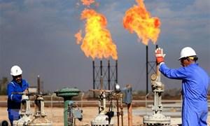 Giá dầu tăng theo chứng khoán, palađi lại lập đỉnh cao mới