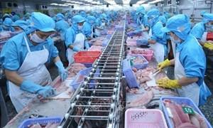 Thúc đẩy cho vay sản xuất, kinh doanh thủy sản theo chuỗi giá trị